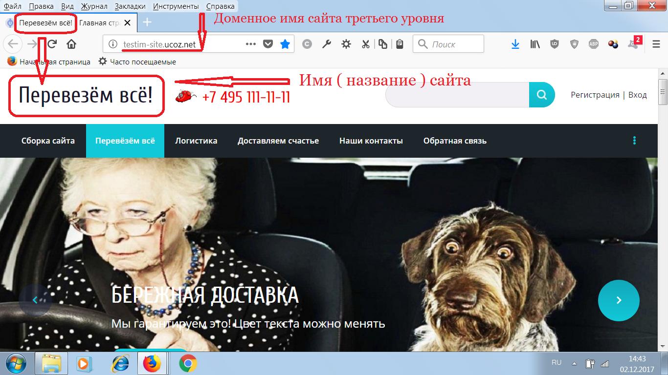 Доменное имя сайта