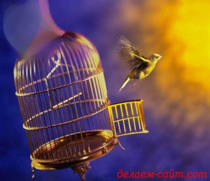 освобождение безсмертного духа